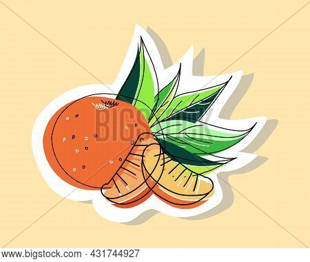 Vector Illustration Of A Tangerine With Tangerine Slices On A Background Of Leaves. Doodle Style Wit
