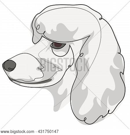 Continuous Line White French Poodle. Single Line Minimal Style Poodle Dog Vector Illustration. Portr