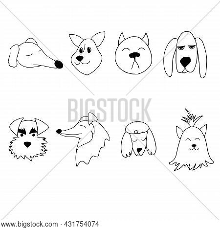 Vector Portrait Of A Dogs Of Different Breeds In Doodle Cartoon Style. Pet Illustration Of Basset Ho