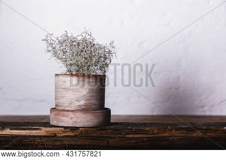 Handmade Pot With Home Flower On Wood With White Loft Background. Craft.