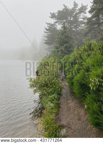 Morning mist lake over Serviere lake and an hiking trail, Auvergne, France