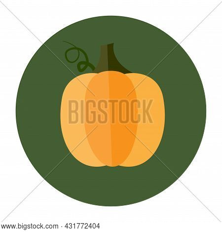 Yellow Gourd In Green Circle. Harvesting Time. Thanksgiving Day. Autumn Vegetable. Vector Illustrati