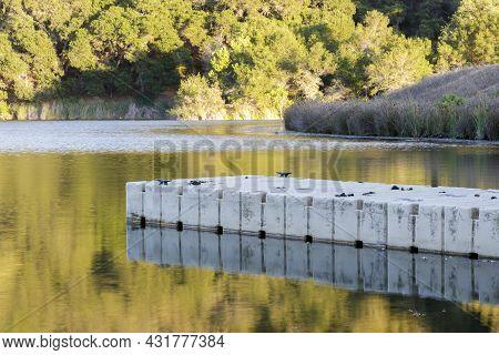Boat Dock At Boronda Lake In Foothills Park With Sunset Reflections. Palo Alto, Santa Clara County,
