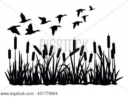 Vector Silhouette Of Duck Bird Flock Flight Over Marsh Herbs Isolated On White Background. Group Of