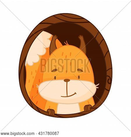 Funny Orange Squirrel Character With Bushy Tail Peeped Out From Tree Hollow Vector Illustration
