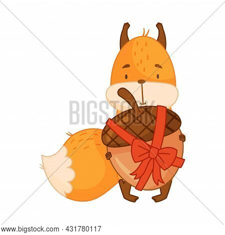 Funny Orange Squirrel Character With Bushy Tail Holding Acorn Tied With Ribbon And Bow Vector Illust