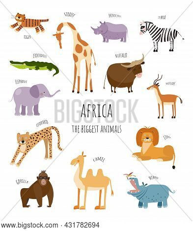 Vector Collection With Biggest African Animals. Illustration With Cute Animals For Children. Elephan