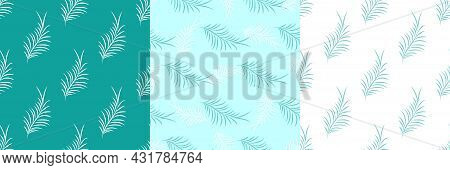 Set Of Exotic Tropical Botanic Seamless Patterns. Tropical Leaves White And Green Colors. Vector Ill