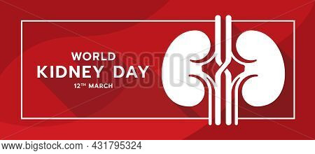 World Kidney Day Text And White Human Kidney Sign In Frame Abstract Red Curve Texture Background Vec
