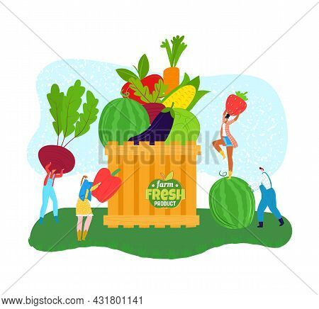 Organic Food, Fresh Nature Product From Farm, Vector Illustration. Man Woman People Character Collec