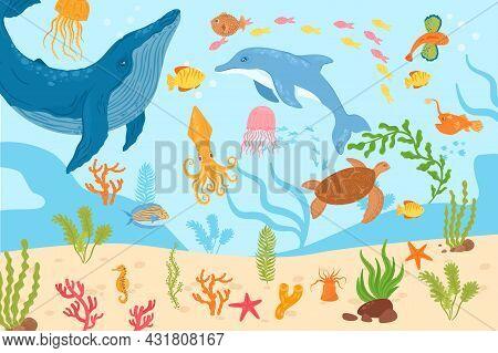 Underwater Marine Life, Vector Illustration. Tropical Sea Fish, Dolphin, Octopus Swim At Coral Natur
