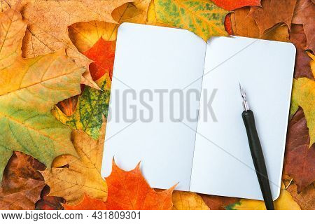 Top View Of A Notebook With Autumn Leaves And Ink Pen. Colorful Maple Leaves And Blank Pages Of Diar