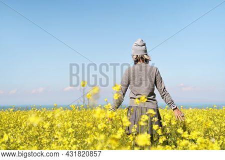 Rear View Of An Asian Tourist Taking A Walk In Canola Flower Field
