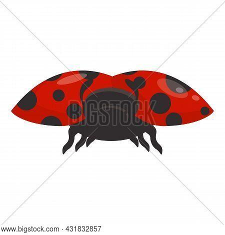 Ladybird Icon Cartoon Vector. Ladybug Insect. Natural Bug