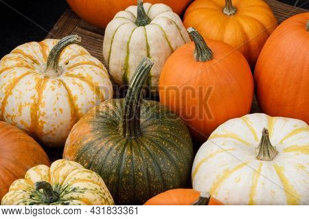 Pile of many multi colored pumpkins and gourds of different shapes and colors. Different kinds Colorful pumpkins decoration