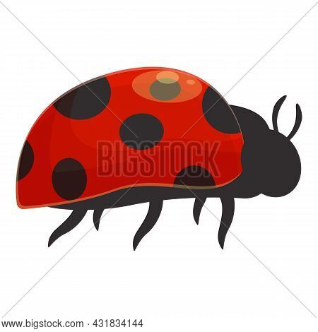 Garden Ladybird Icon Cartoon Vector. Ladybug Insect. Summer Bug
