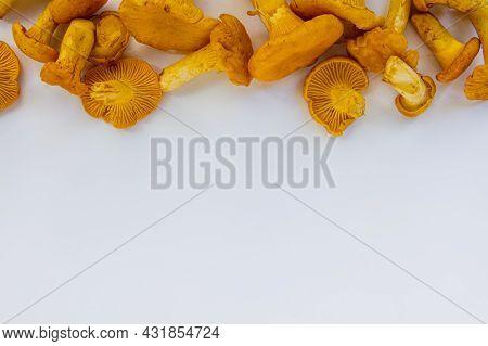 Studio Shot Of Fresh Yellow Delicious Wavy Autumn Vegetarian Chanterelle Mushrooms At The Top On Whi