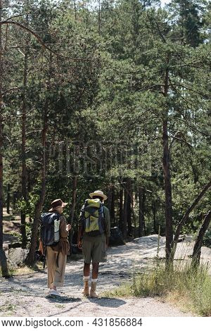 Elderly Multiethnic Couple With Backpacks Hiking In Forest.