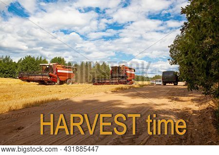 Harvest Time. Combine Harvesters In The Field For Harvesting Wheat. Special Equipment On The Field.