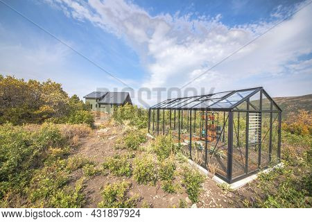 Glass Greenhouse With Metal Frameworks On A Vast Of Shrubs And Bushes