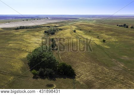 Steppe Landscape With Trees Growing In A Beam Background Backdrop