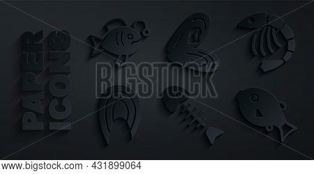 Set Fish Skeleton, Shrimp, Steak, Tropical Fish, Mussel And Icon. Vector