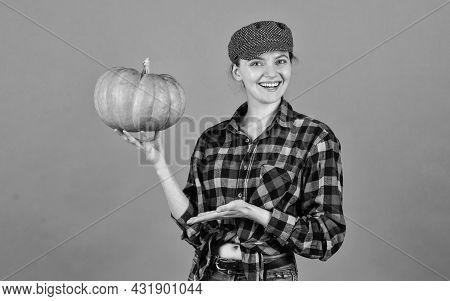 Homegrown Pumpkin. Organic Farming. Family Farm. Woman Rustic Farmer Presenting Pumpkin. Agriculture
