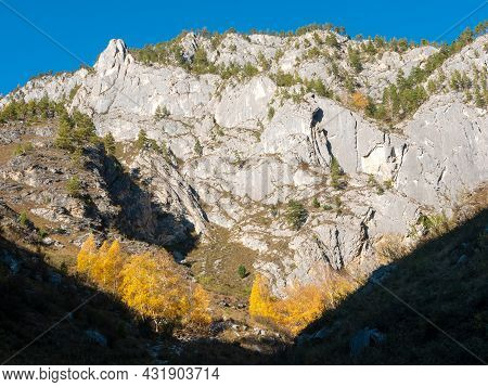 Autumn View Of The Altai Mountains Against The Blue Sky. Che-chkysh, Altai Republic, Russia.