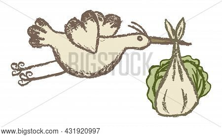Flying Stork Carries A Bundle With Cabbage. Baby Birth Concept. Vector Grunge Clipart