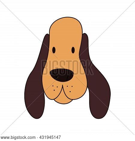 Cartoon Basset Hound Head Isolated. Colored Vector Illustration Of A Dogs Head With An Outline On A