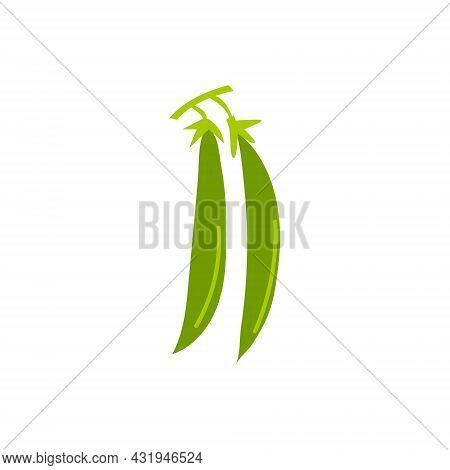 Cartoon Pods Of Green Peas Isolated. Vector Stock Illustration Of A Pair Of Green Pea Pods On A Whit