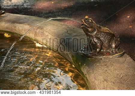 The Element Of The Fountain In The Form Of A Frog Made Of Brass With A Stream Of Water In The Nikols