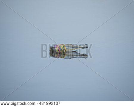 Sint Gillis Waas, Belgium, September 05, 2021, Pollution, Glass Bottle Of Soft Drink Floats Calmly O