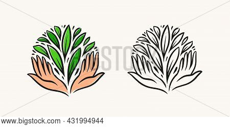 Hands And Green Leaves Logo. Organic, Natural Product Symbol. Environment, Nature Concept Vector Ill