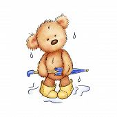 teddy bear with umbrella and rubber boots poster