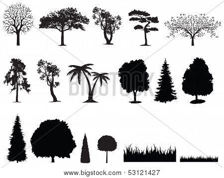 silhouette of tree grass