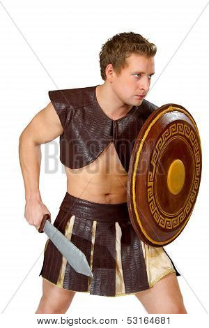 a young male warrior with a shield poster