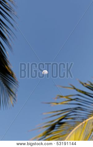 Moon still in the morning with a clear sky in Porto Seguro, Bahia - Brasil