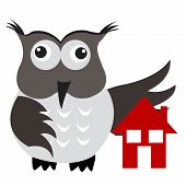 Concept of home insurance with house under owl wing protection poster