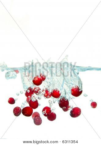 Cranberry Splash