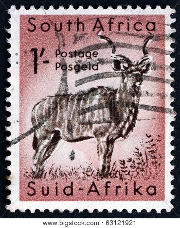 Postage stamp South Africa 1954 Greater Kudu, Antelope