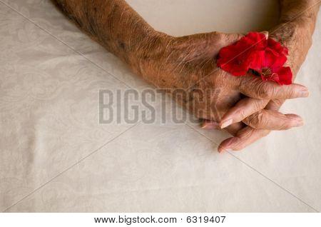Folded Hands Senior