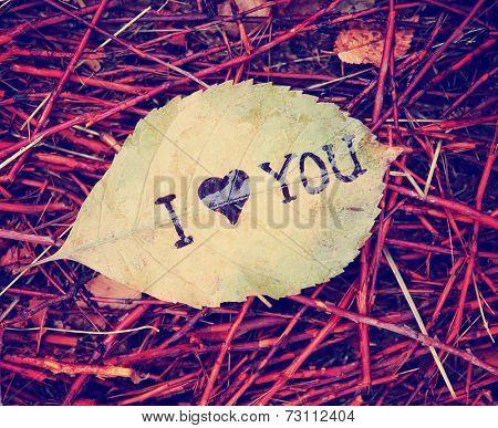 a leaf that reads