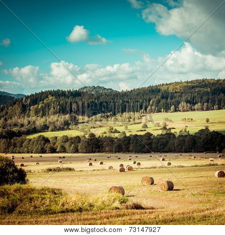 Hay bail harvesting in golden field landscape poster