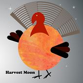 Harvest moon Turkey  poster
