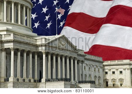 United States Capital With Flag