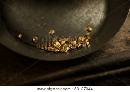 Found gold. gold panning or digging. Gold on wash pan. Intentionally shot with low key shadows and shallow depth of field.