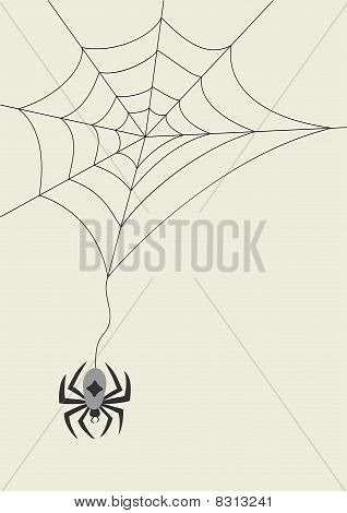 Vector card with spider and cobweb