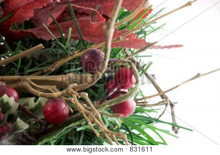 red wooden nuts and tree