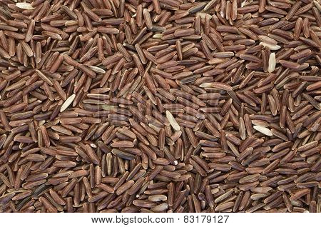 Wholemeal Brown Rice Grains